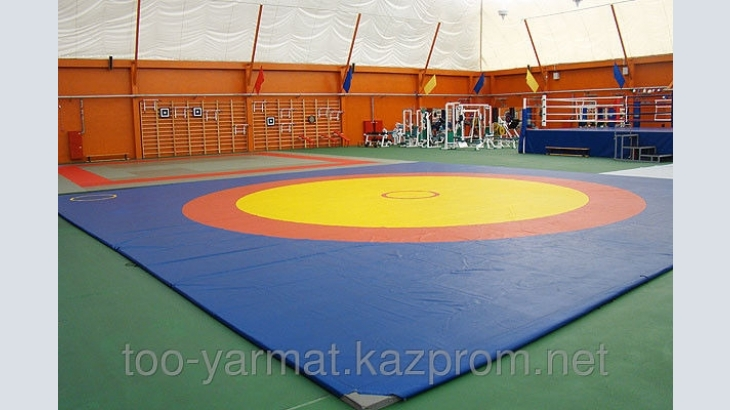 Sports Mat for martial arts